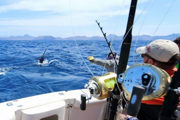 fishing-lanzarote-by-day_1