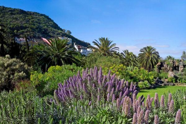 gran-canaria-volcano-tour-las-palmas-and-botanical-gardens-package_1