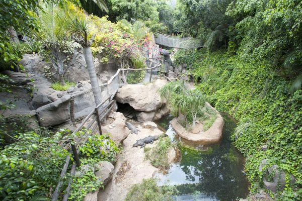jungle-park-tenerife-day-tour2