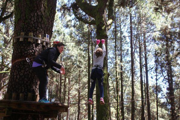 forestal-park-tenerife-day-tour
