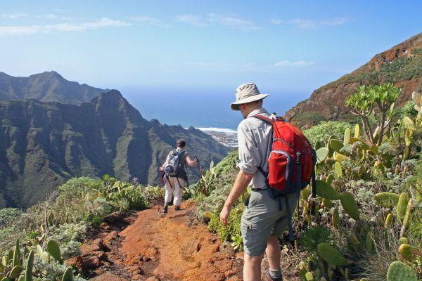 hiking-and-trekking-tenerife-excursion