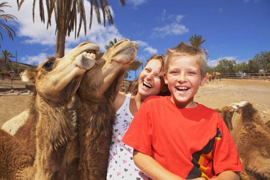 Fuerteventura Attractions