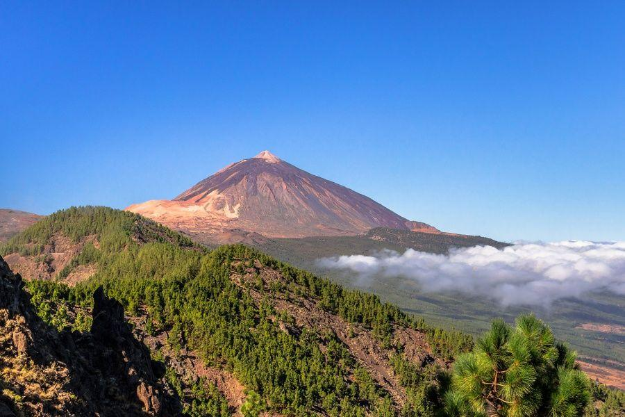 mount-teide-and-puerto-de-la-cruz-tour4